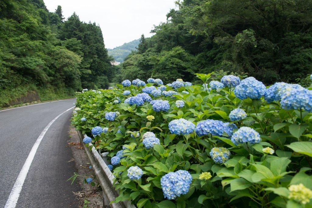 Kifu No Sato, Okayama Image 27