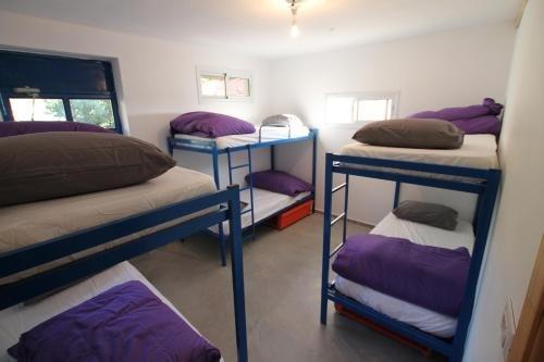 Golan Heights Hostel, Odem Image 7