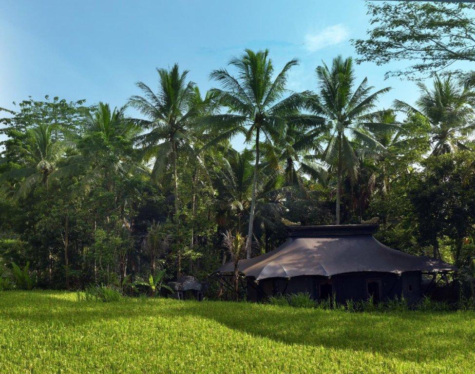Capella Ubud, Bali Image 10