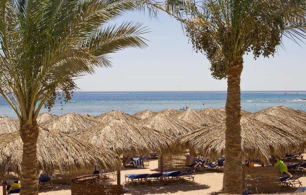 Jaz Makadina, Hurghada Image 34