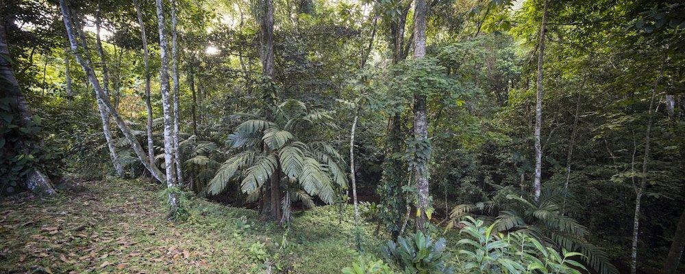 Yabá Chiguí Lodge, Uvita Image 24