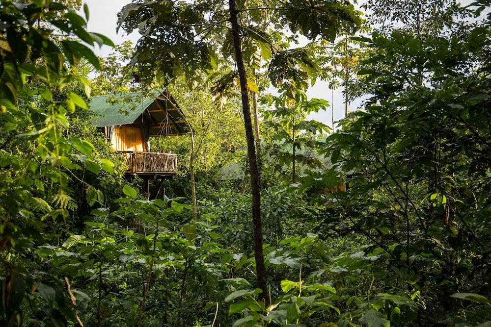 La Tigra Rainforest Lodge, La Fortuna Image 32