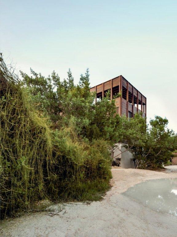 Punta Caliza, Isla Holbox Image 25