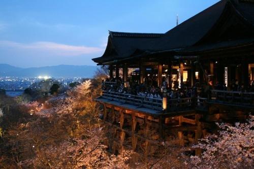 Tsugu Kyoto Sanjo By The Share Hotels Image 27