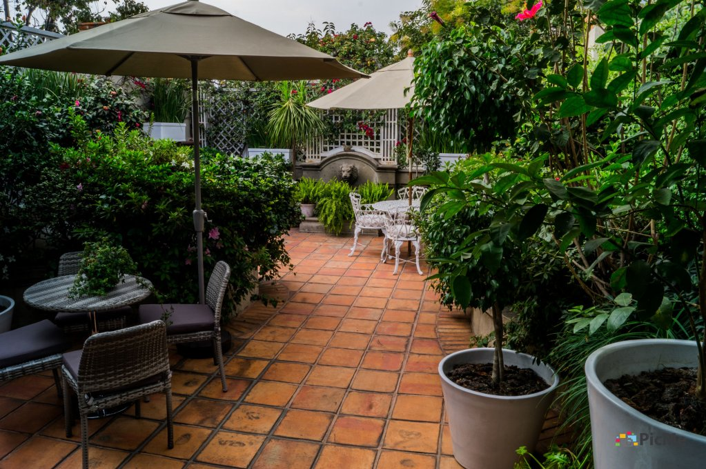 Nima Local House Hotel, Mexico City Image 49