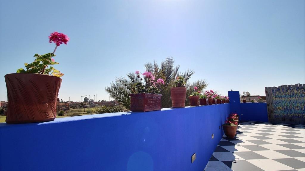 Riad Goloboy,  Marrakech Image 16