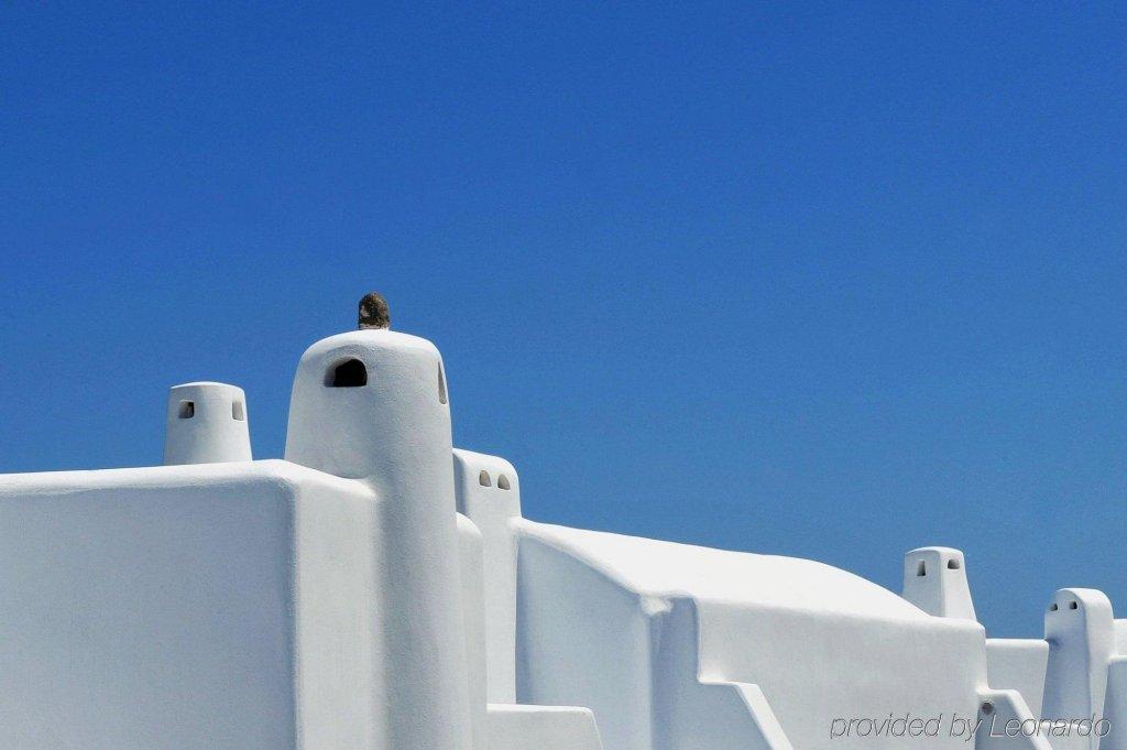 Carpe Diem Santorini Image 28