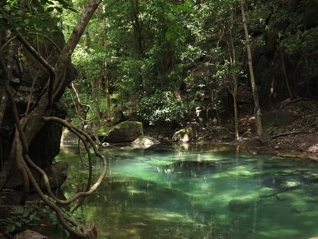 Rio Perdido, Guanacaste Image 9
