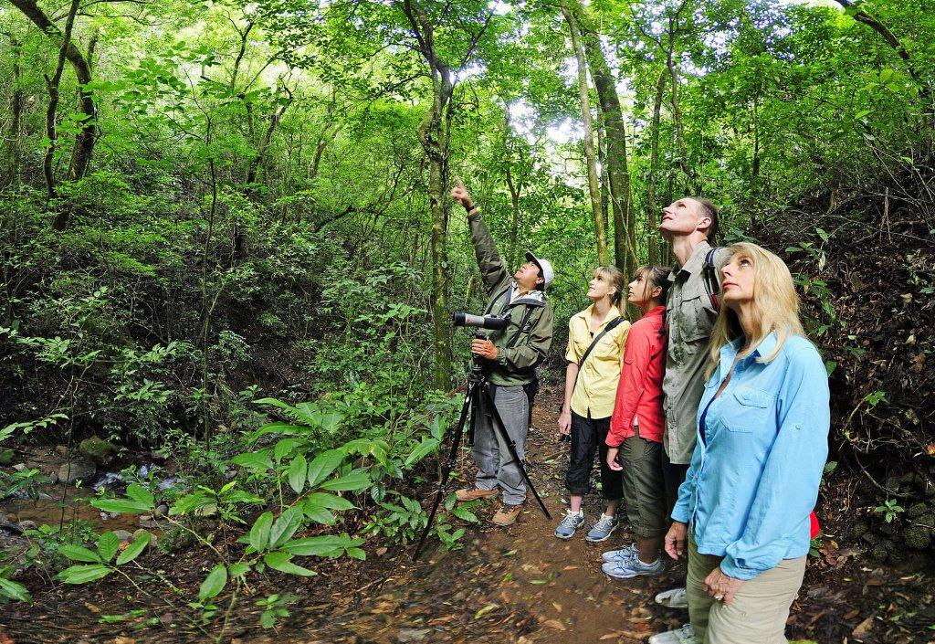 Monteverde Lodge & Gardens, Monteverde Image 30