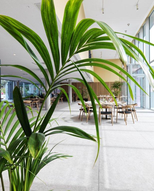 Noa Boutique Hotel, Oleiros Image 20