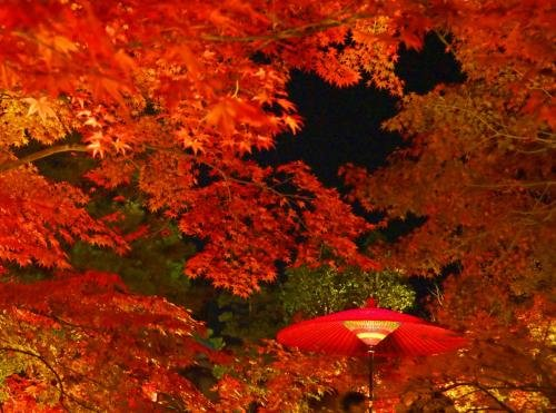 Tsugu Kyoto Sanjo By The Share Hotels Image 33