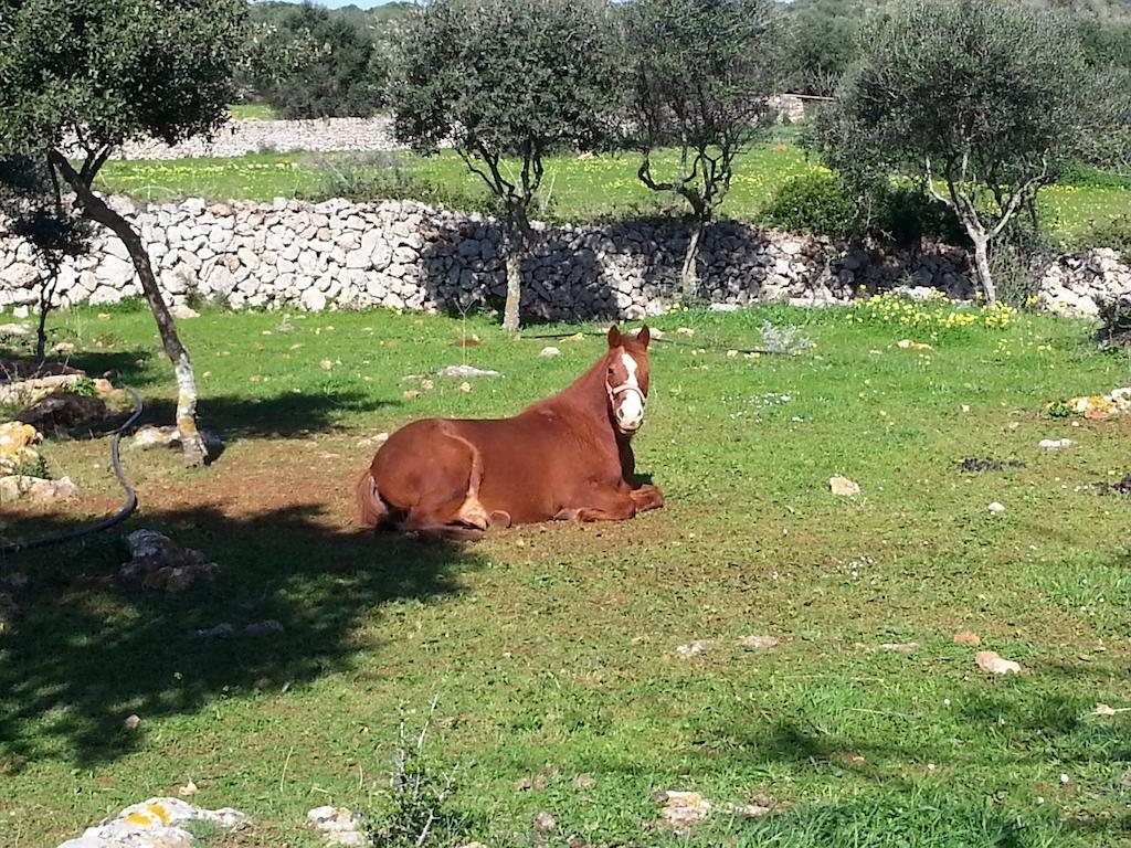 Sant Joan De Binissaida Hotel Rural, Mahon, Menorca Image 8