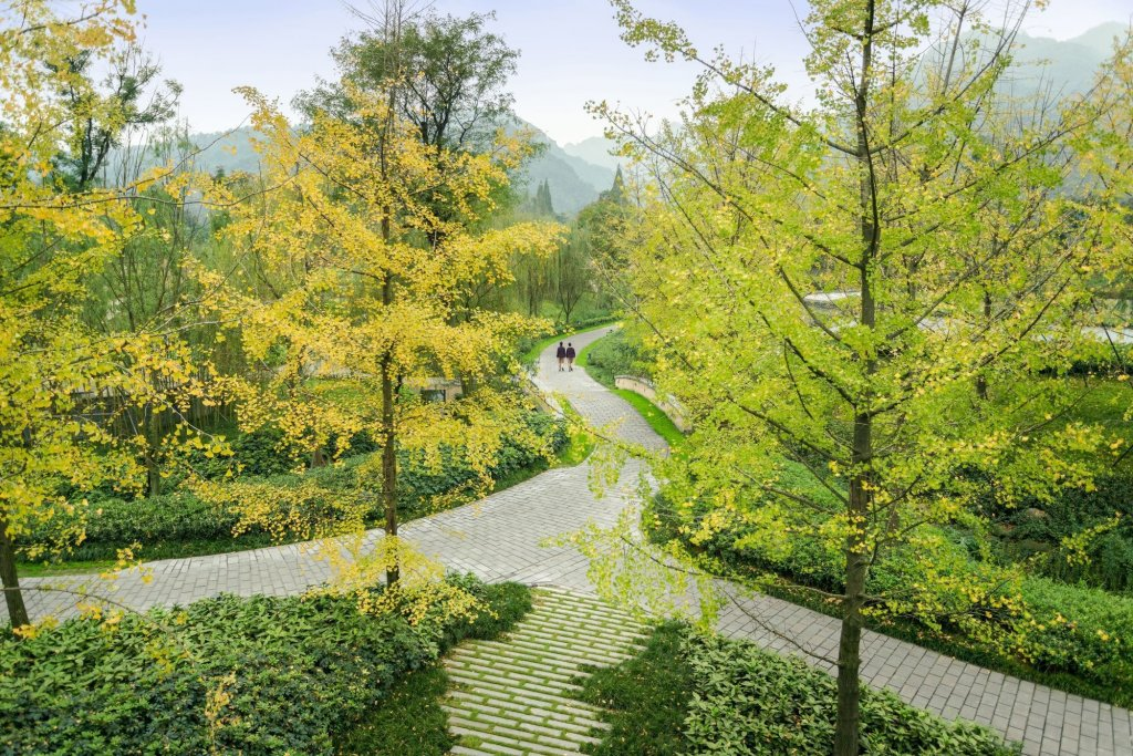 Six Senses Qing Cheng Mountain, Chengdu Image 26