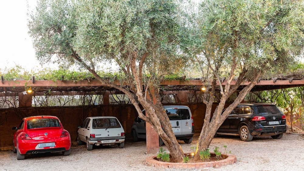 The Green Life, Marrakech Image 29