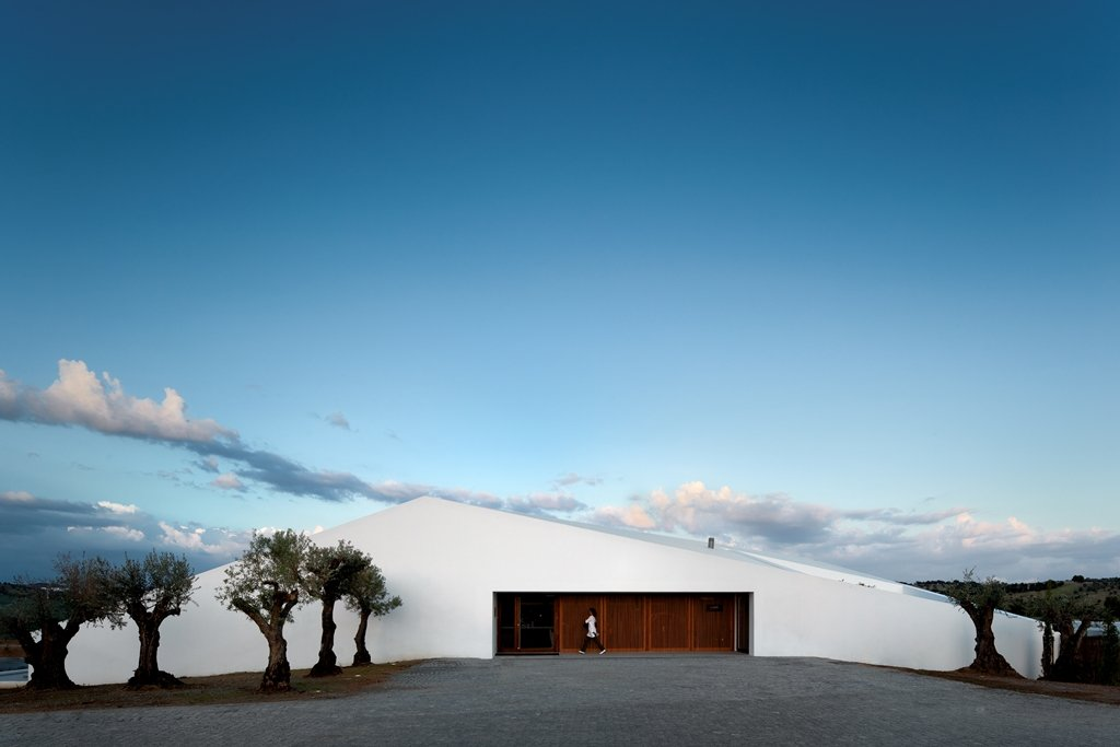 L'and Vineyards, Montemor-o-novo Image 18