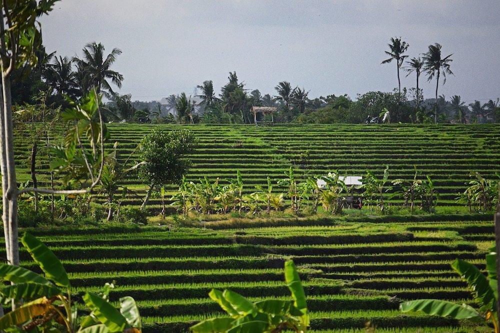 Six Senses Uluwatu, Bali Image 18