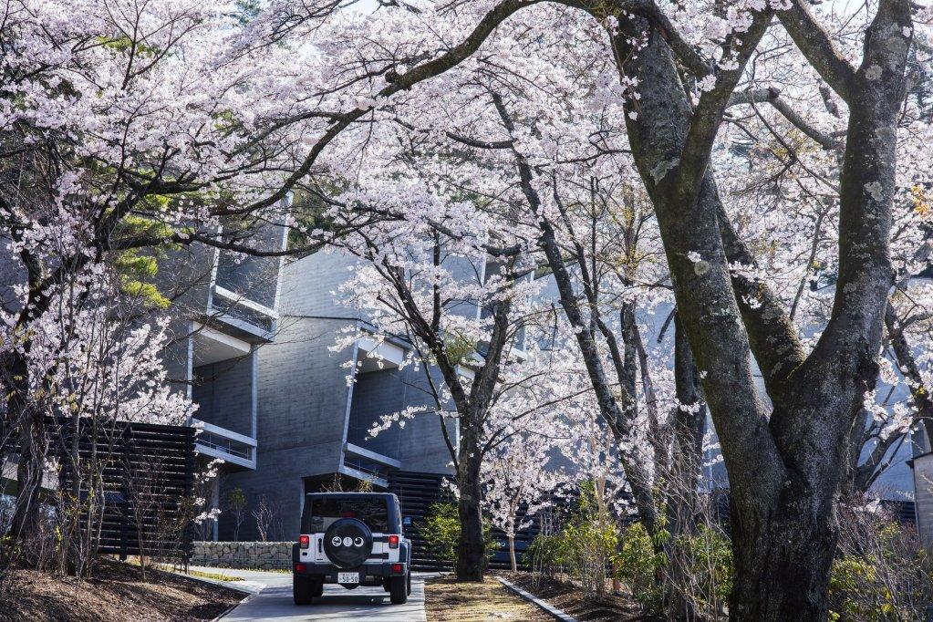 Hoshinoya Fuji, Fujikawaguchiko Image 10