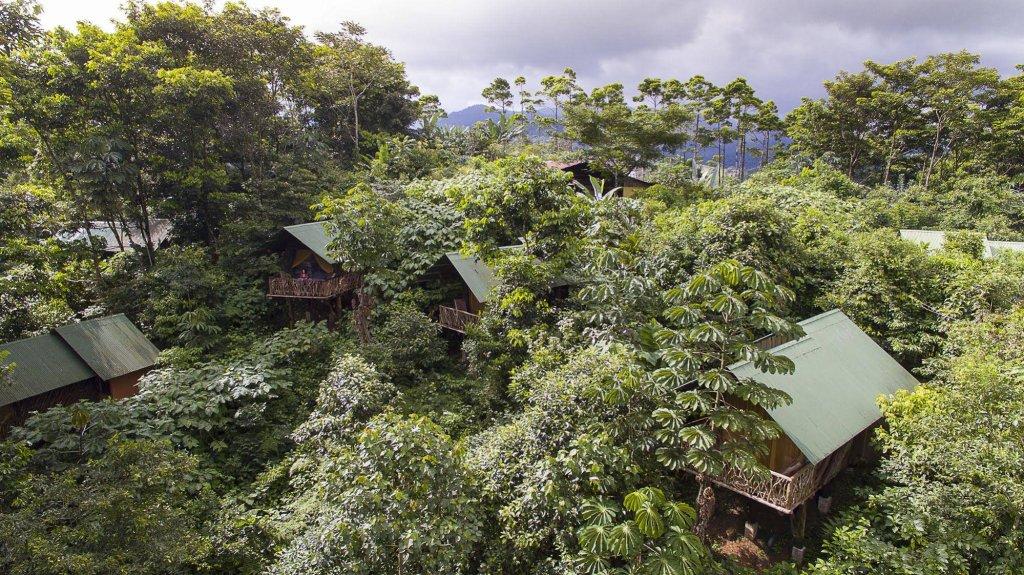 La Tigra Rainforest Lodge, La Fortuna Image 29