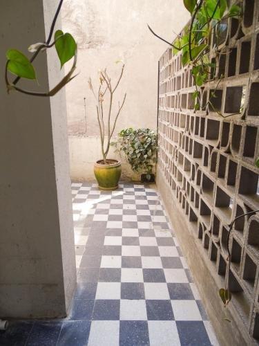 Izta 54 - Hostel, Mexico City Image 25