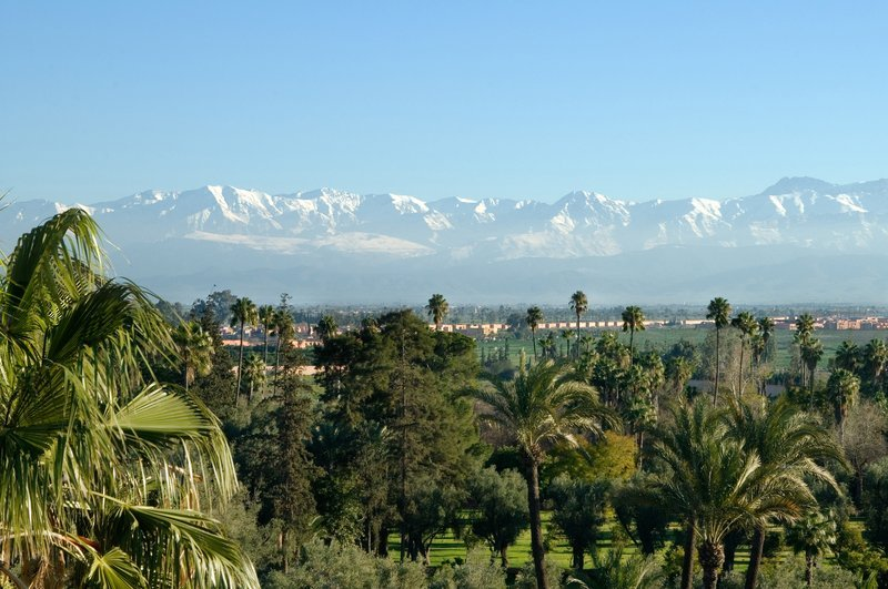 La Mamounia, Marrakech Image 30