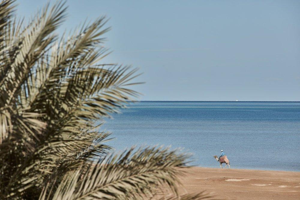 La Maison Bleue, Hurghada Image 33