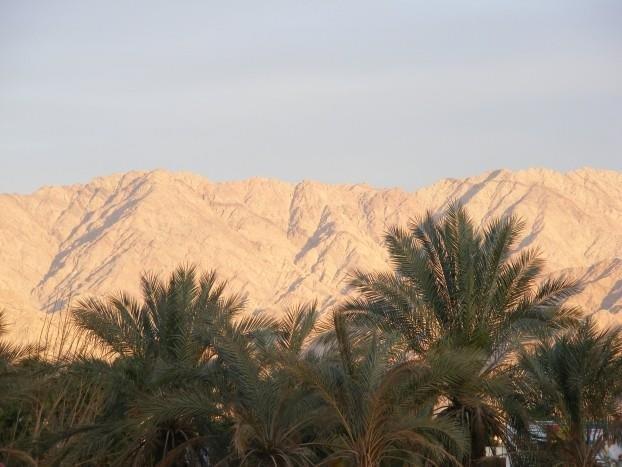Dan Panorama Eilat Image 43