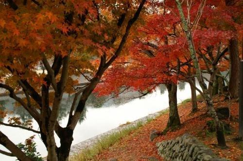 Hotel Resol Trinity Kyoto Image 45