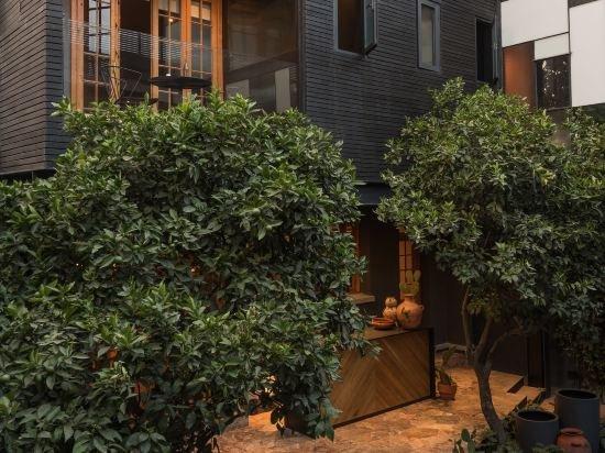 Ignacia Guest House, Mexico City Image 26