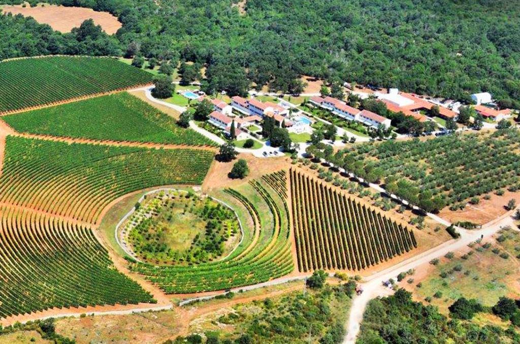 Meneghetti Wine Hotel And Winery Image 11