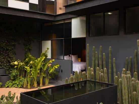 Ignacia Guest House, Mexico City Image 27