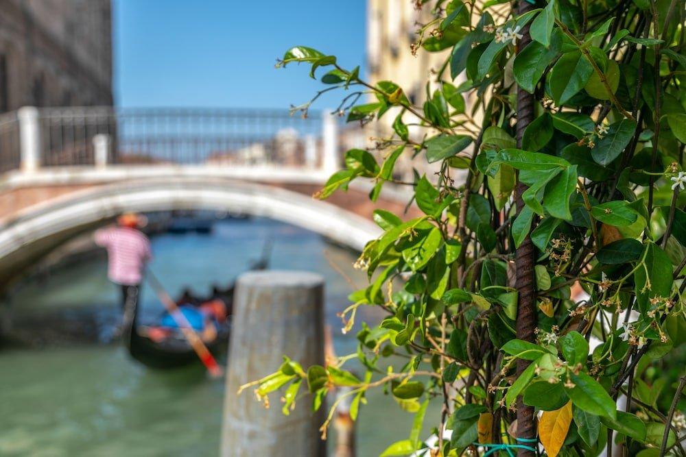 Madama Garden Retreat, Venice Image 2
