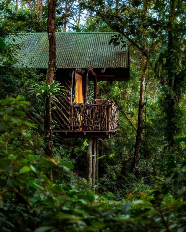 La Tigra Rainforest Lodge, La Fortuna Image 42
