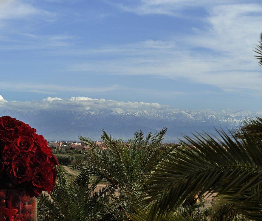 Sofitel Marrakech Lounge And Spa, Marrakech Image 40