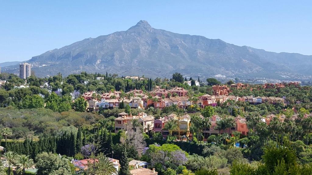 The Oasis By Don Carlos Resort, Marbella Image 7