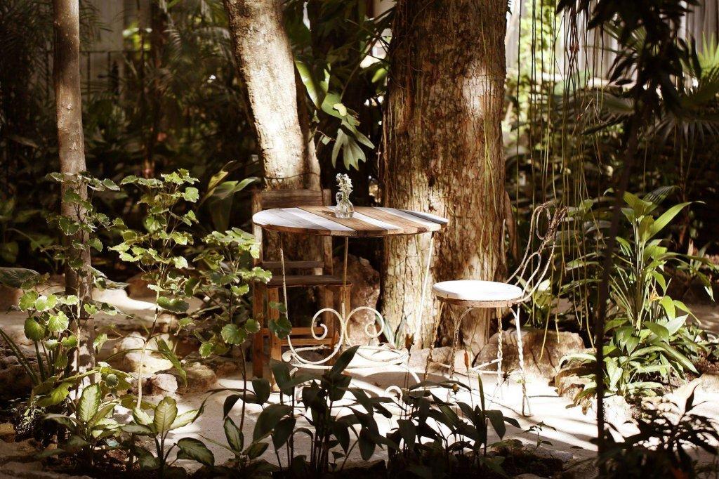 Hotel La Semilla Image 12