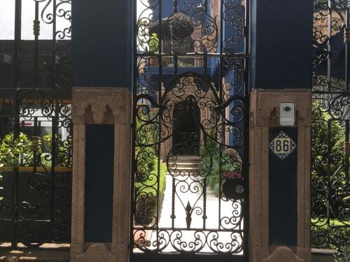 Pug Seal Tennyson, Mexico City Image 27