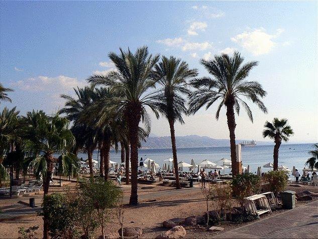 Palms Hotel Eilat Image 3