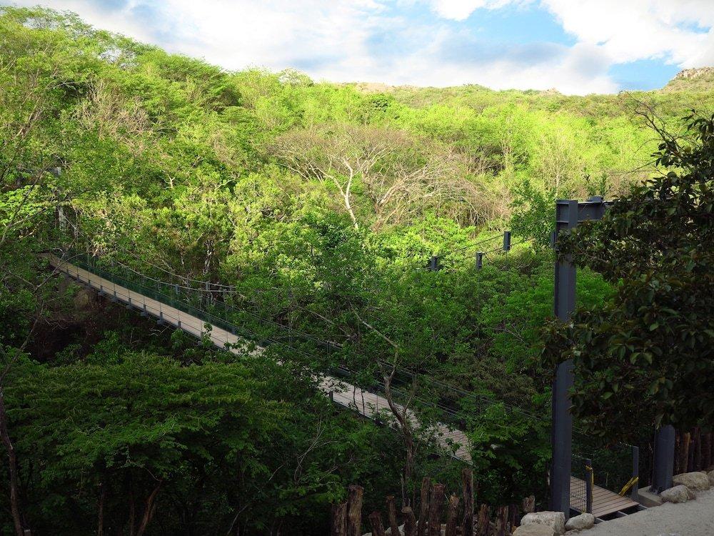 Rio Perdido, Guanacaste Image 34