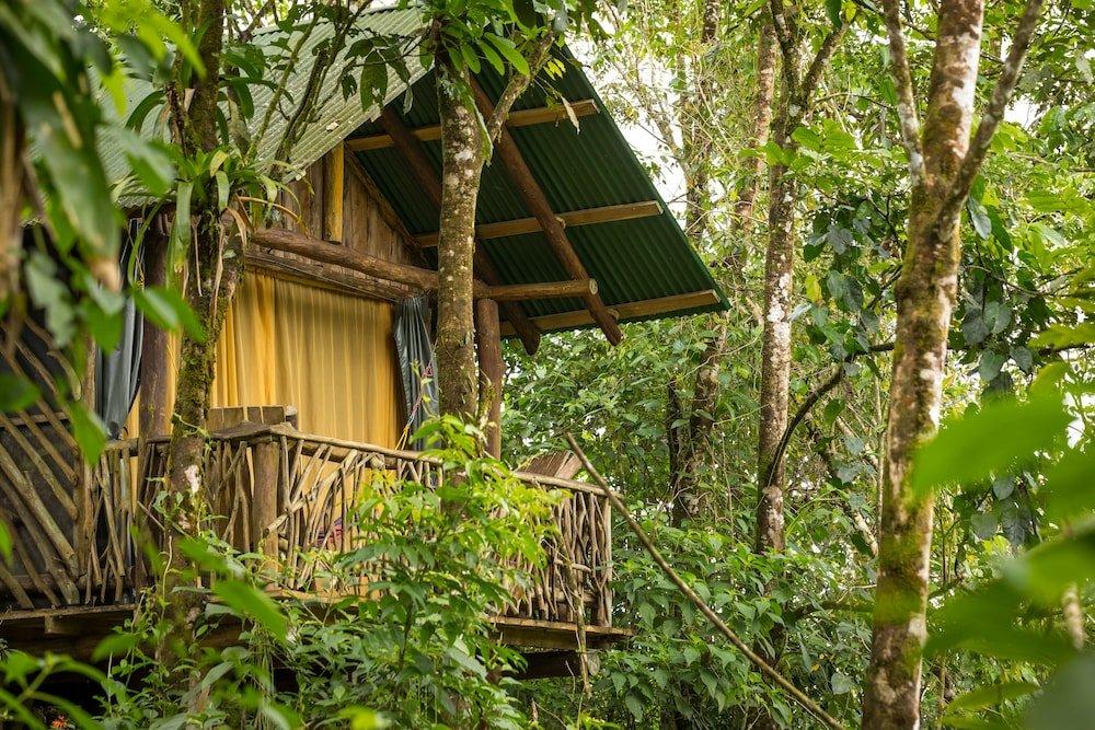 La Tigra Rainforest Lodge, La Fortuna Image 28