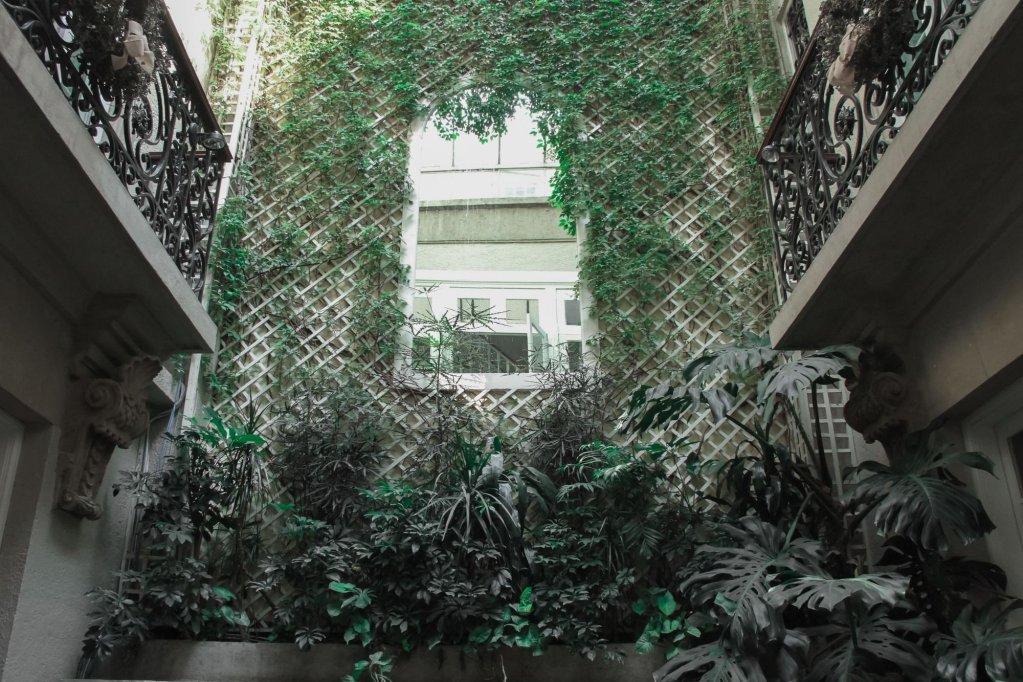 Nima Local House Hotel, Mexico City Image 13