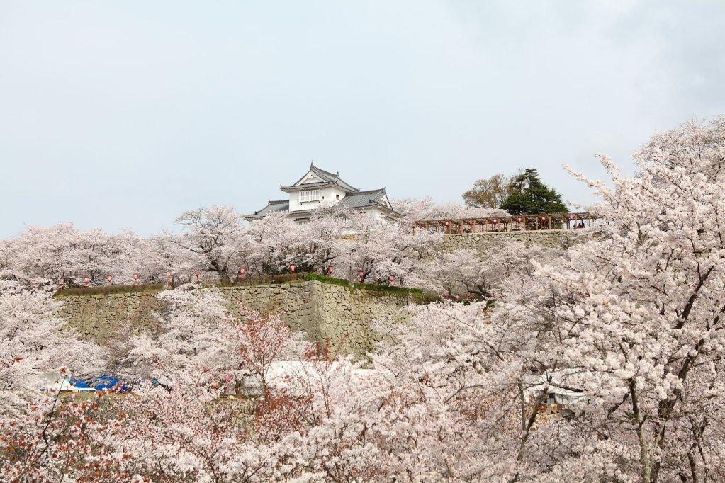 Kifu No Sato, Okayama Image 26