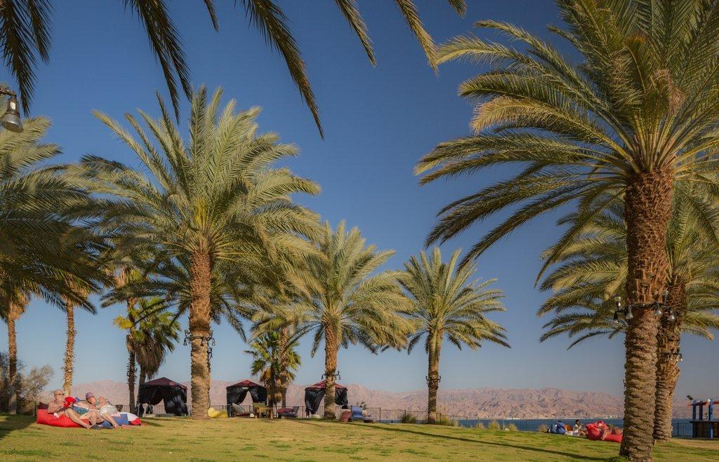 Prima Music Eilat Image 14