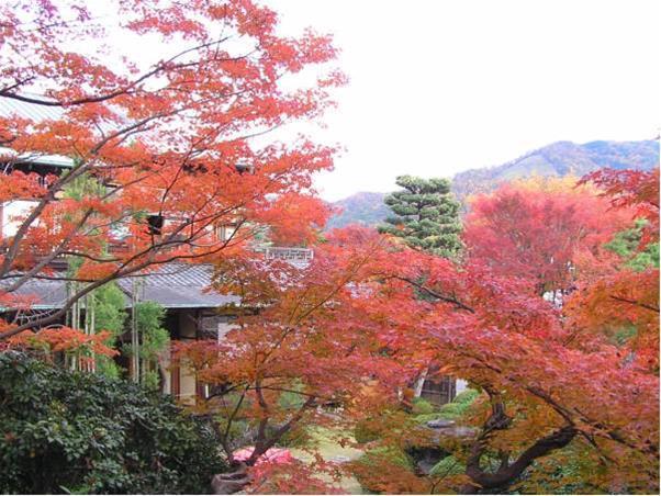 Yoshida Sanso, Kyoto Image 5