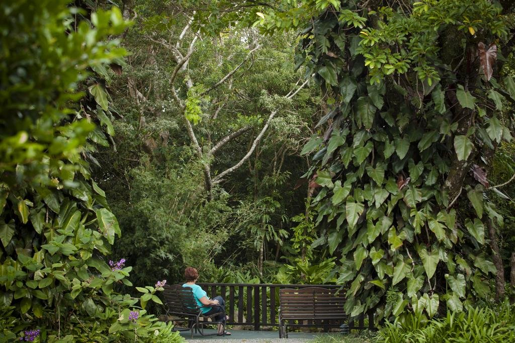 Monteverde Lodge & Gardens, Monteverde Image 37