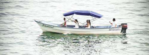 Xinalani Eco Resort Hotel, Puerto Vallarta Image 29