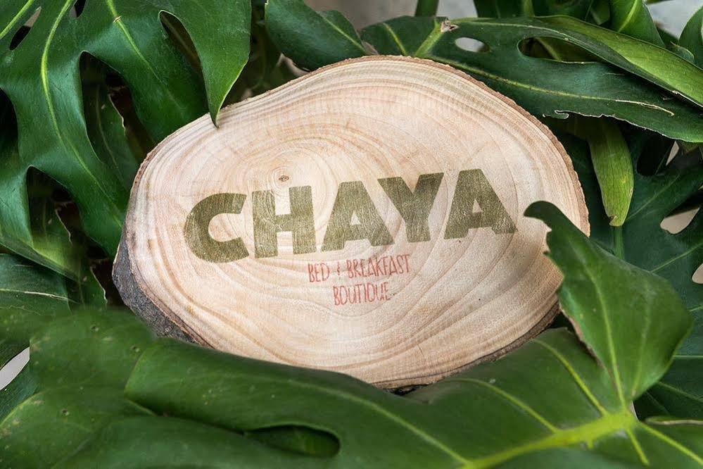 Chaya B & B Boutique, Mexico City Image 27