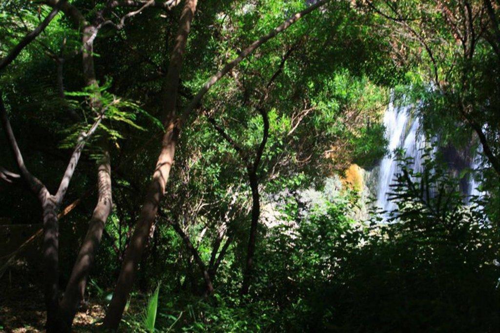 Ma'in Hot Springs, Madaba Image 40