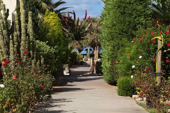 Cretan Malia Park A Member Of Design Hotels, Malia, Crete Image 34