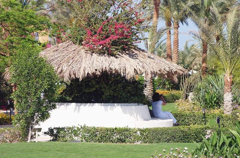 Jaz Makadina, Hurghada Image 38
