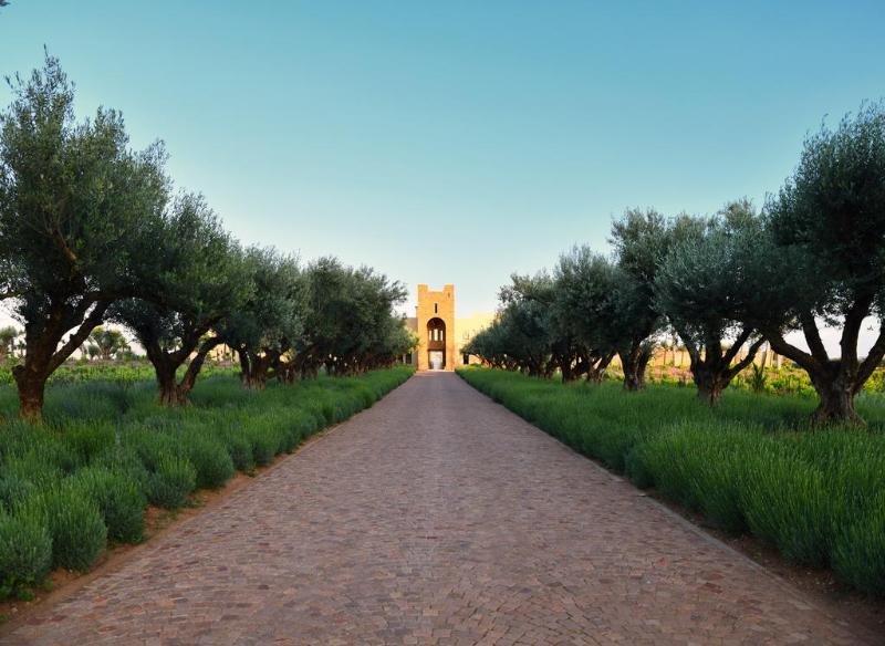 Chateau Roslane Boutique Hotel & Spa, Meknes Image 32